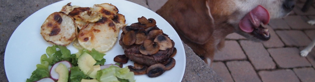 LCHF filet with creamed kohlrabi and salad